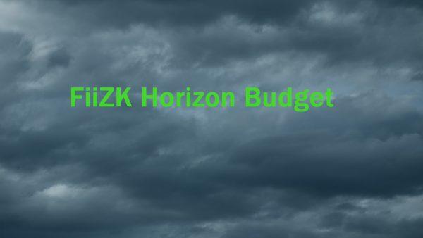 FiiZK Horizon Budget